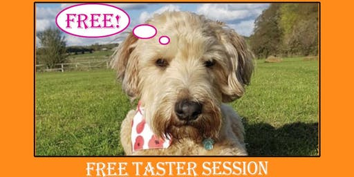 Free Taster Dog Training Session