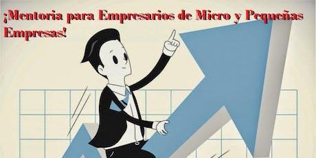 Programa de Mentoría para Emprendedores, Micro y Pequeños Empresarios entradas