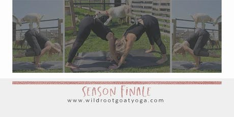 Goat Yoga Season Finale - September 21 tickets