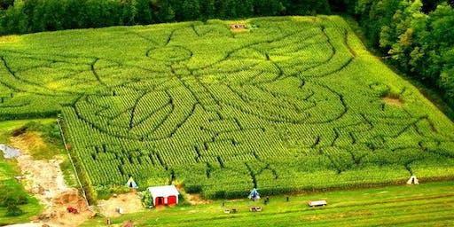 Labyrinthe de maïs au Verger Labonté || Galaxia, dernière chance pour l'alliance