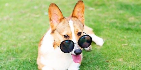 BYOD Austin Brunch & Pups Meetup tickets