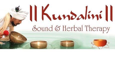 Singing Bowl workshop and guided meditation with Chaitanyashree tickets