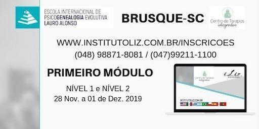 FORMAÇÃO INTERNACIONAL PSICOGENEALOGIA EVOLUTIVA - Módulo I
