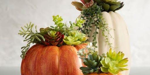 Pumpkin- Succulent Centerpiece