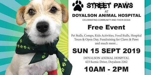 Street paws at Doyalson Animal hospital