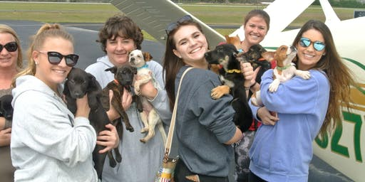 Puppy Rescue Flight