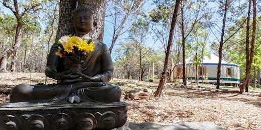 Women's Taoist Wellness Retreat