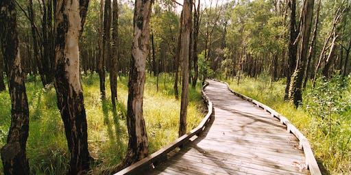 NaturallyGC Seniors Week Coombabah Lakelands Bushwalk