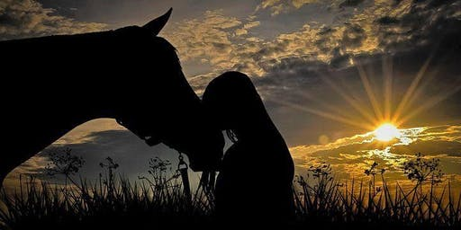 Sunset Meditation with Horses