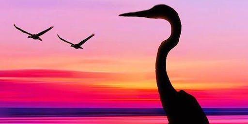 Stunning Stork - Art Class