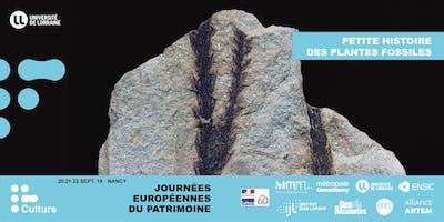 JEP 2019 : Petite histoire des plantes fossiles