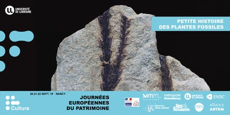 JEP 2019 : Petite histoire des plantes fossiles billets