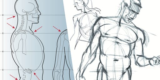 Intensive life drawing course / Cours intensif de modèle vivant