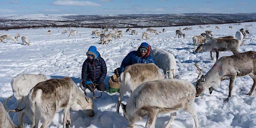 Hazel & Luke Robertson: The Sami and the Reindeer (DUMFRIES)