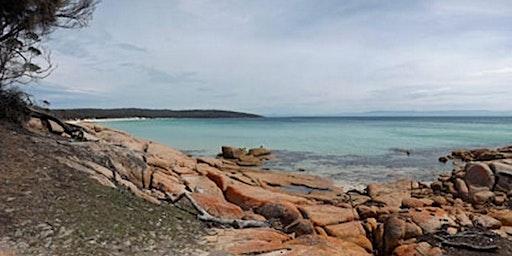 Freycinet National Park Circuit Tasmania Australia