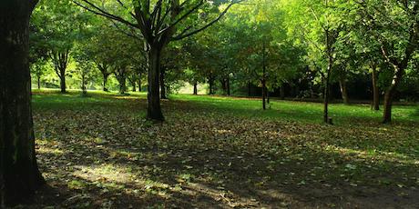 Walk on the Wild Side - Knighton Park tickets