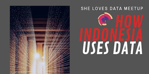SheLovesData Jakarta Meetup: How Indonesia Uses Data