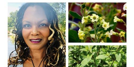 Chat, Sip & Chew with Herbalist Medium Shelowann