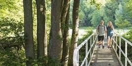 Westerwald: Rundwanderung von Hachenburg zur Abtei Marienstatt