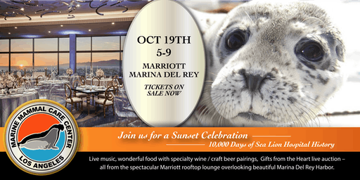 MMCC LA Sunset Celebration - 10,000 Days of Sea Lion Hospital History