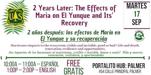 2 años después: los efectos de María en El Yunque  y su recuperación