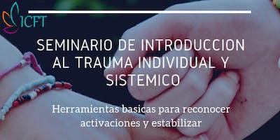 Seminario De Introducción Al Trauma Individual y Sistémico