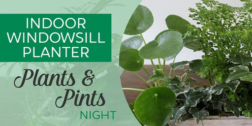 Plants & Pints Night | Indoor Windowsill Planter