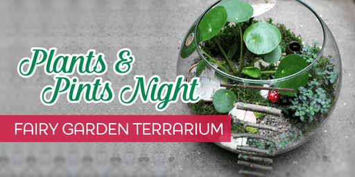 Plant & Pints Night | Fairy Garden Terrarium