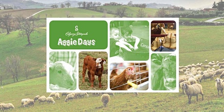 Roots Homeschool - Aggie Days 2020 tickets
