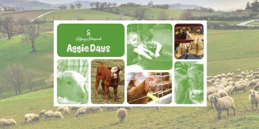 Roots Homeschool - Aggie Days 2020