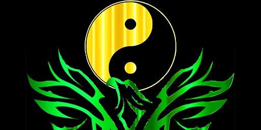 Beginner Teen/Adult Class - Kung Fu / Stress Management