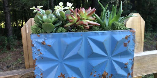 Succulent Planter Workshop with The Wooden Globe