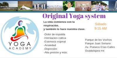 Yoga Academy-Original Yoga System