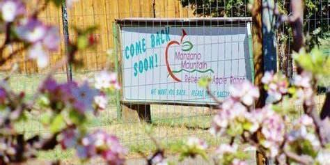 Manzano Mountain Retreat Apple Festival
