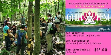 Gaia Fest: Wild Plant and Mushroom Walks tickets