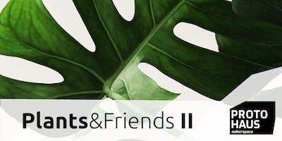 PLANTS & FRIENDS Vol. II - Pflanzentauschbörse, DIY & Vortrag