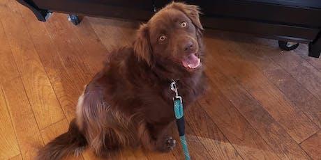 Man's Best Blend Pup Up Cafe tickets