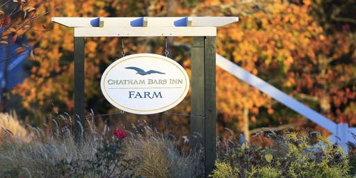 Farm Fest at Chatham Bars Inn Farm