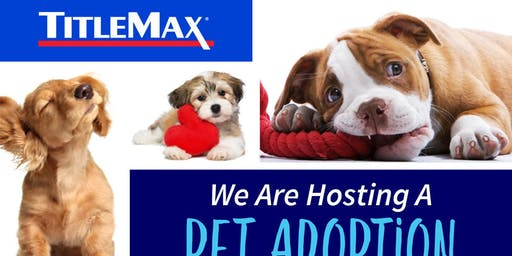 Pet Adoption at TitleMax Lake St. Louis, MO