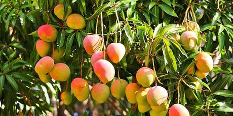 Intro to Tropical Fruit Gardening by Tropical Fruit Society of Sarasota tickets