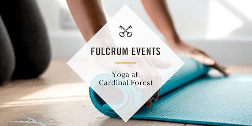 Springfield Cardinal Forest - Yoga Tuesdays