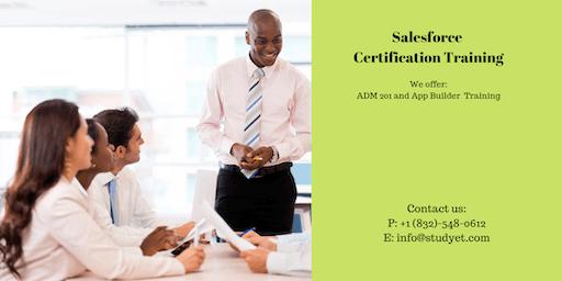 Salesforce Admin 201 & App Builder Certification Training in New London, CT