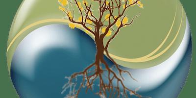 Energetics of Yin and Yoga Nidra