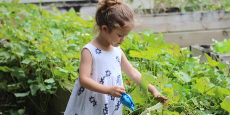 Family Fun with the Kids: Grow Your Own Plant Workshop tickets