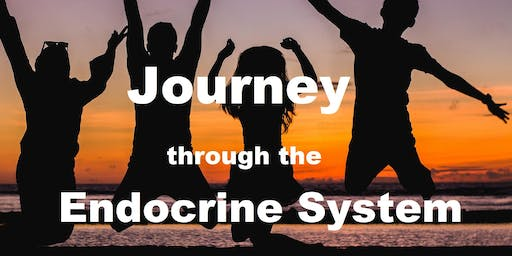 Journey Through the Endocrine System  (9am)