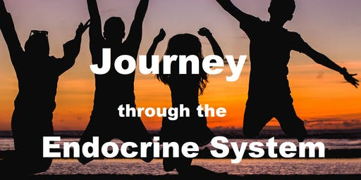 Journey Through the Endocrine System (3-5pm)