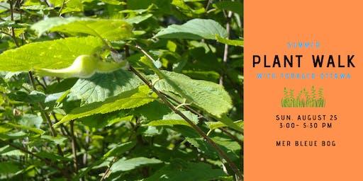 Summer Edible Plant Walk - Mer Bleue Bog