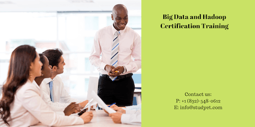 Big Data & Hadoop Developer Certification Training in Asheville, NC