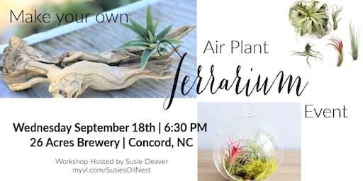 DIY Air Plant Terrarium @ 26 Acres Brewery
