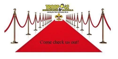 Check out our troop as a VIP